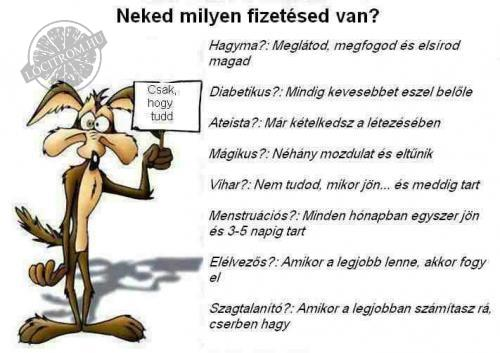 Neked milyen a fizetsed?